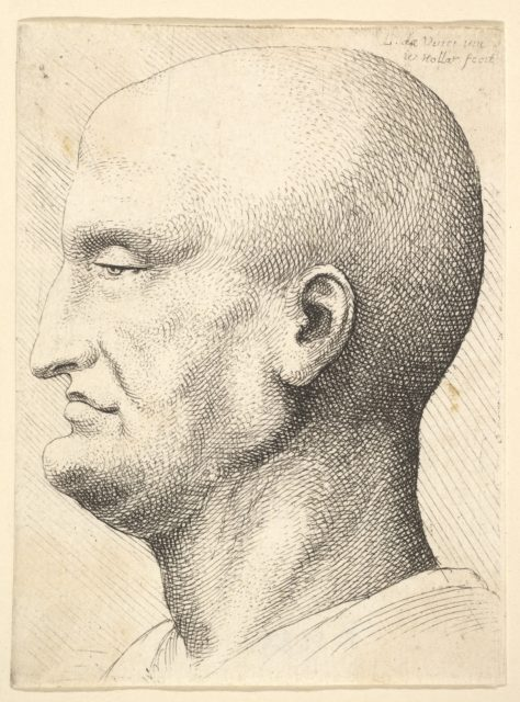 Head of a bald man in profile to left