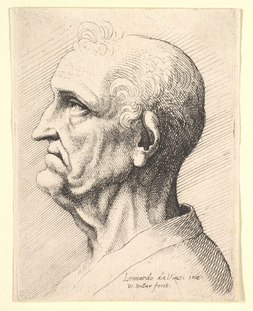 Head of an old man with tufts of curly hair around ear in profile to left