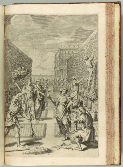 Hesperides sive de Malorum Aureorum cultura et usu. Libri Quatuor