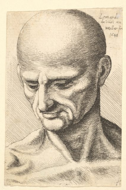 Head of a bald, sinewy man looking downwards