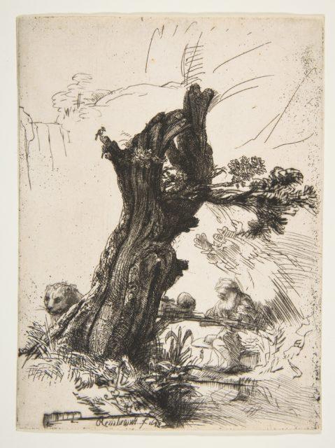 St. Jerome beside a Pollard Willow