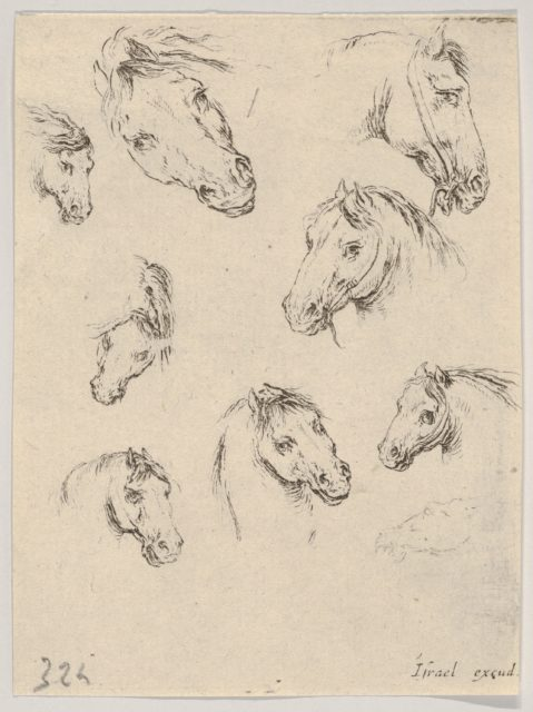 Plate 17: Nine studies of horse heads, from 'Various heads and figures' (Diverses têtes et figures)