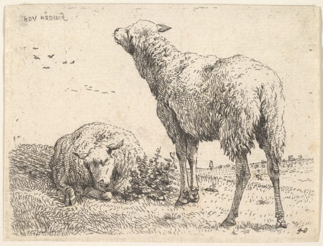 Two sheep, one shown frontally in a reclining position with its legs folded underneath the body, to the right a standing sheep shown from behind in three-quarters view, a grassy field below them and beyond