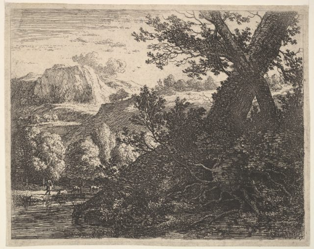 Tree with roots laid bare alongside a stream, a hilly landscape and a man walking behind quadrupeds beyond
