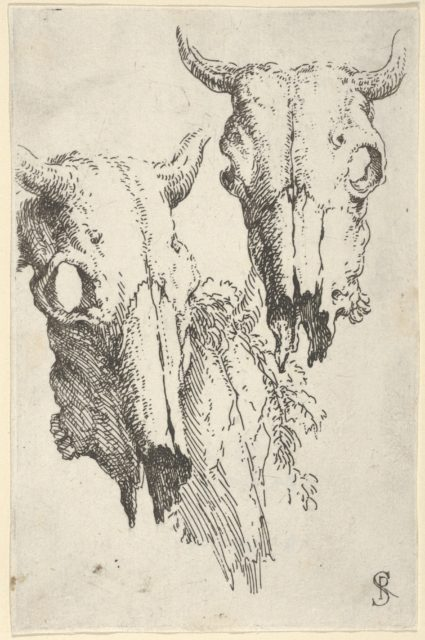 """Two ox skulls and a portion of a third, study for """"Democritus in Meditation"""""""