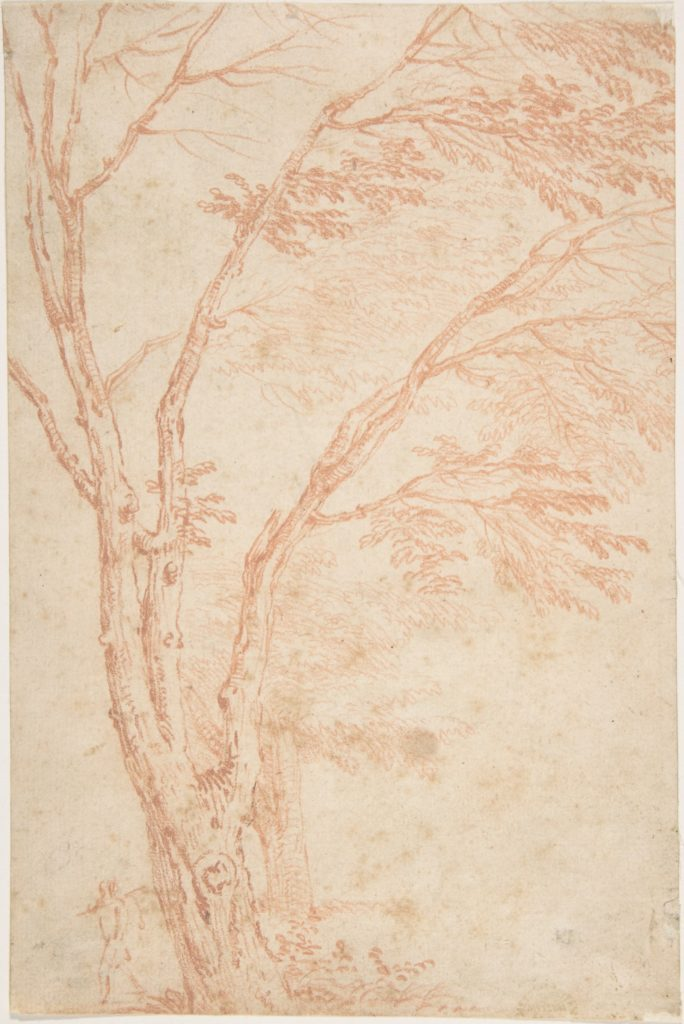 A tree and figure