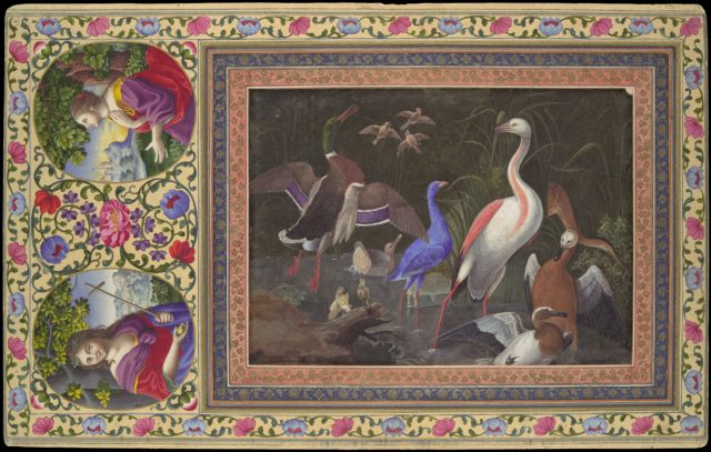 """Aquatic Birds at a Pool"", Folio from the Davis Album"