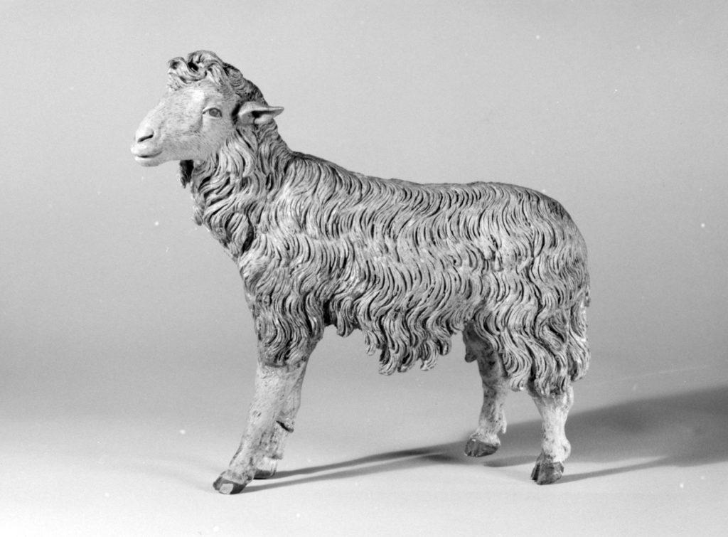 Standing sheep
