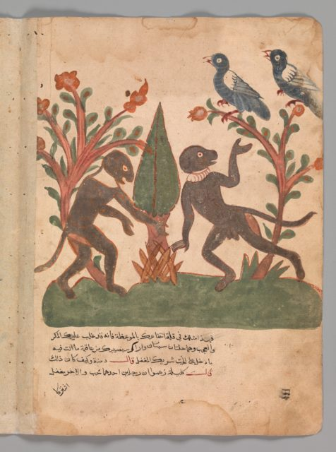 """""""The Birds and the Monkeys with the Glow Worm"""", Folio from a Kalila wa Dimna"""