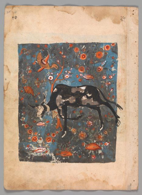 """""""The Ox Shanzabeh Left Behind, Grazing in the Territory of the Lion King"""", Folio from a Kalila wa Dimna"""