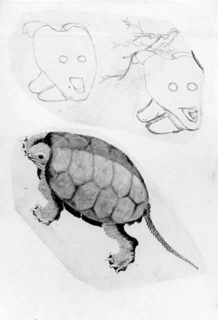 Two Sketches: One of a Turtle, the Other of Two Unidentified Objects