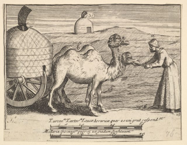 "Two Dromedaries (Aubry de La Mottraye's ""Travels throughout Europe, Asia and into Part of Africa...,""  London, 1724, plate 314)"