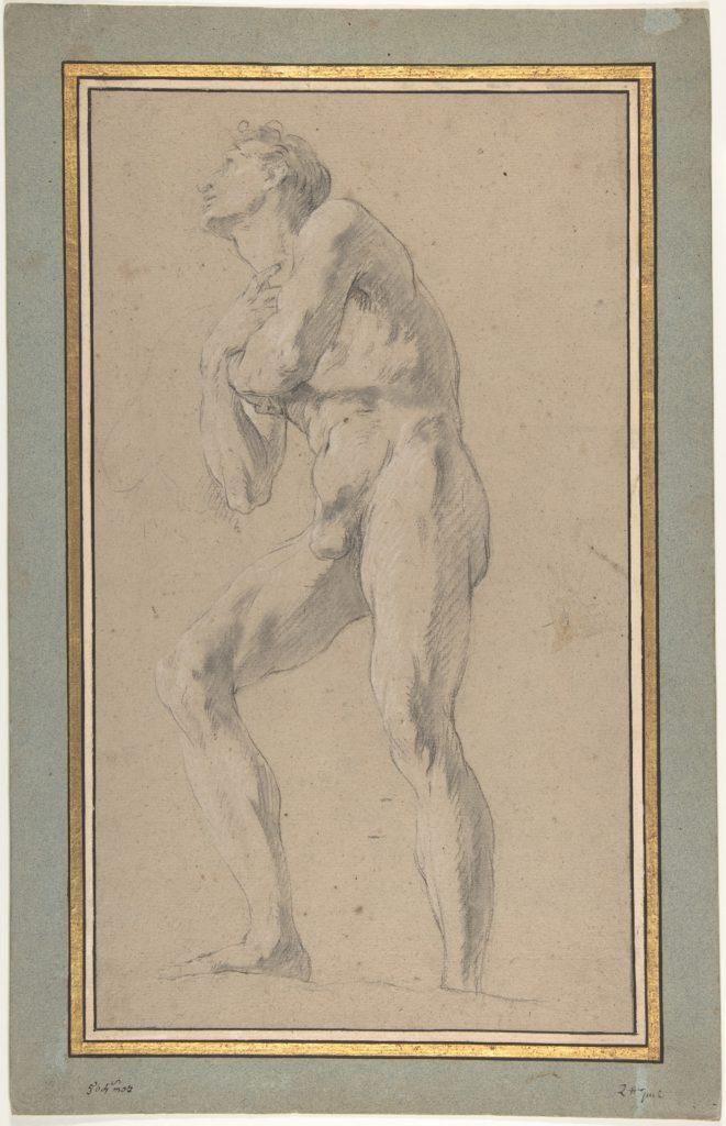 Standing Male Nude Seen from Below
