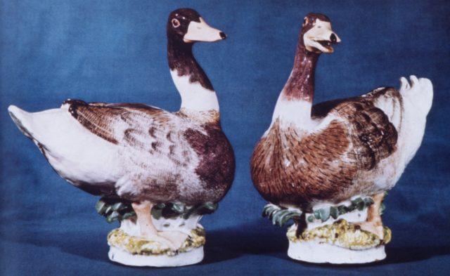 Mallard duck (one of a pair)