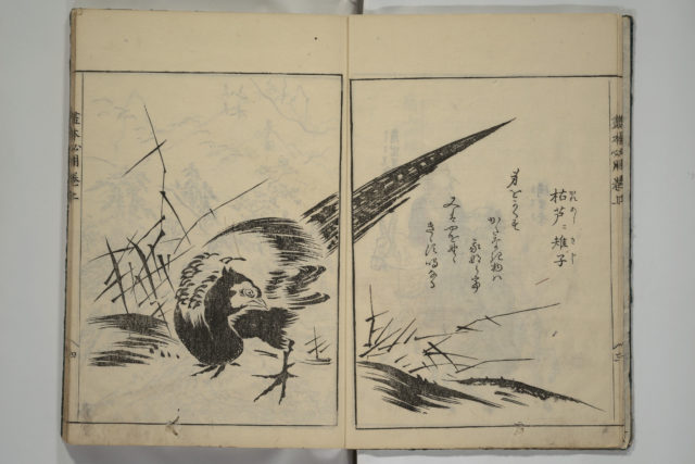 A Picture Book on the Study of Paintings (Ehon hitsuryō)