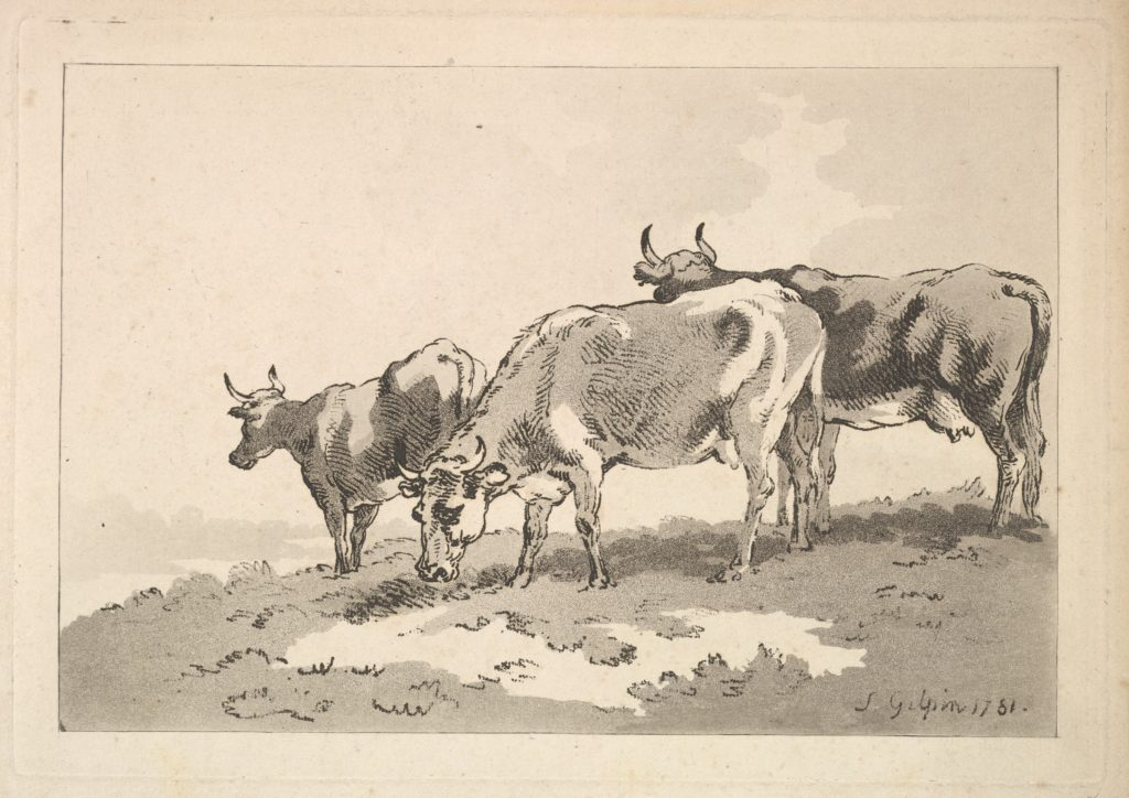 Three Cows Standing on the Ridge of a Field