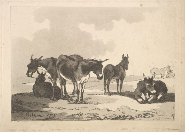 A Group of Five Donkeys, Three Standing, Two Lying
