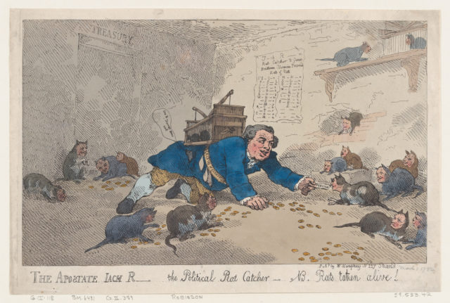 The Apostate Jack Robinson, The Political Rat Catcher–N.B. Rats Taken Alive!
