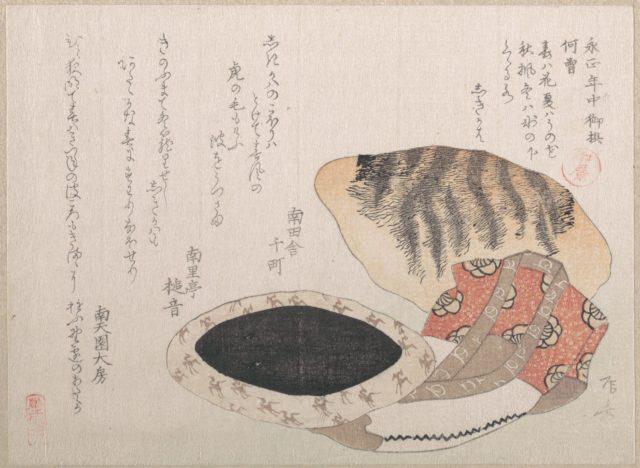 Cushion, Short Coat and Fur of Tiger