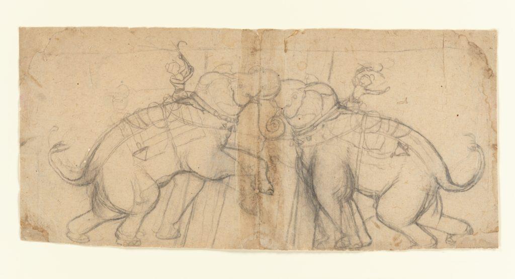 Elephants in Combat