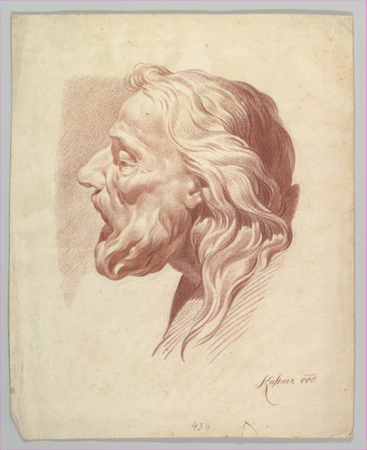 Head of a Bearded Old Man in Profile to the Right