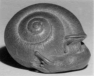 Netsuke of a Snail Emerging from its Shell