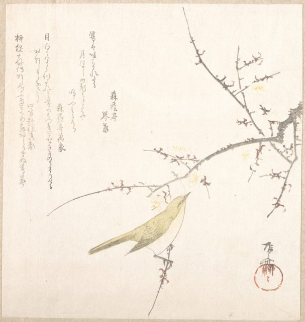 New Moon; Nightingale on a Plum Branch