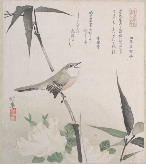 Roses and Bamboo with Nightingale