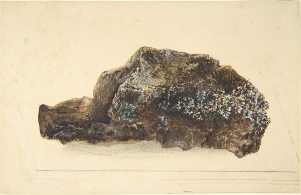 Study of a Rock