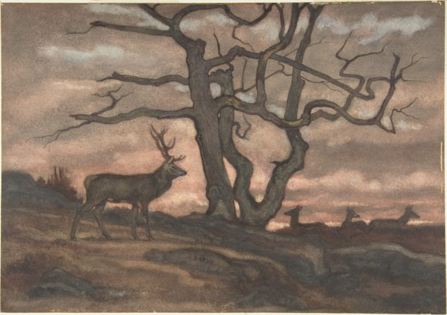 Deer and Tree Against Sunset