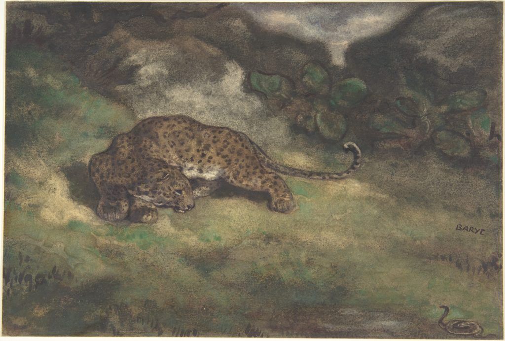 Leopard and Serpent