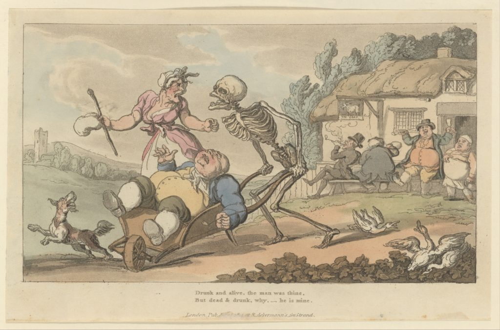 The Sot (The English Dance of Death, plate 12)