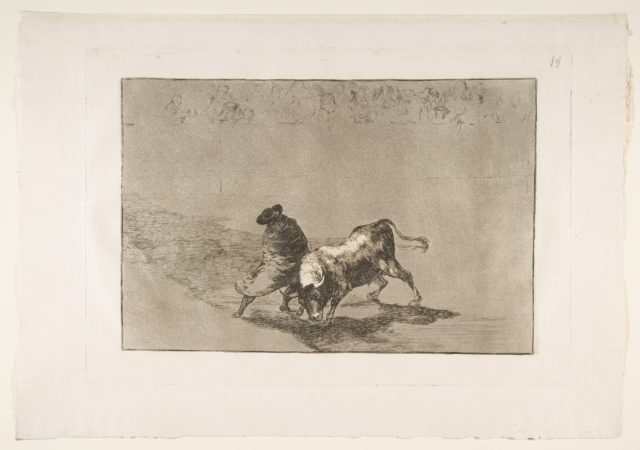 Plate 14 from the 'Tauromaquia': The very skillful student of Falces, wrapped in his cape, tricks the bull with the play of his body.