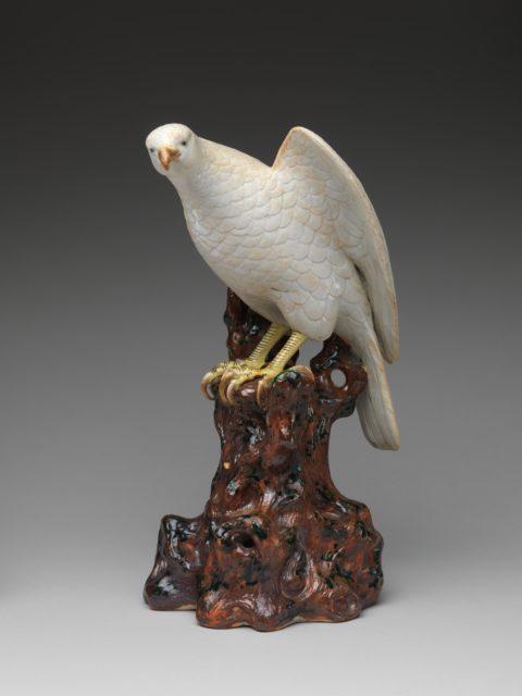 Hawk on a Tree Stump