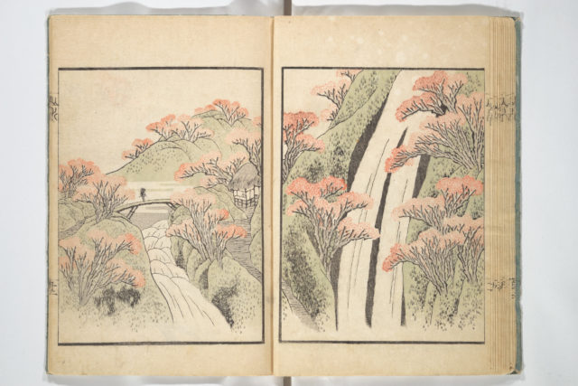 Ichirō Picture Album (Ichirō gafu)