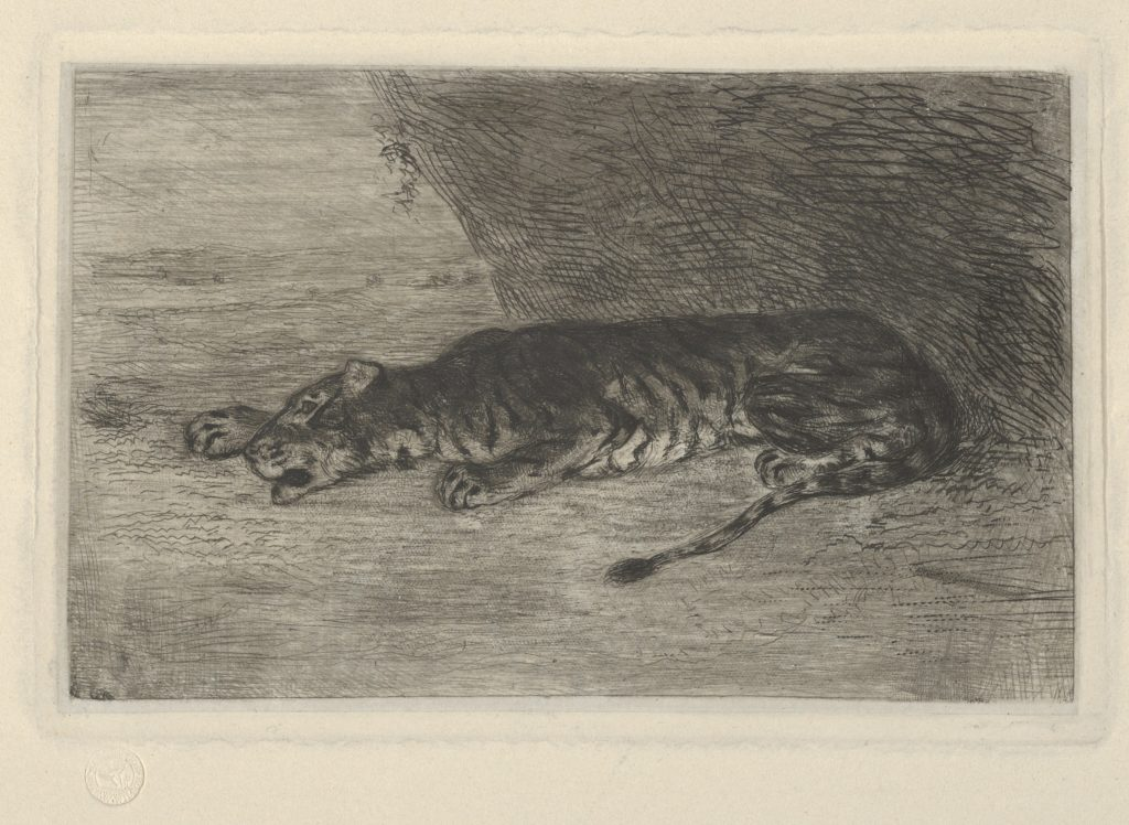 Tiger Lying at the Entrance of its Lair