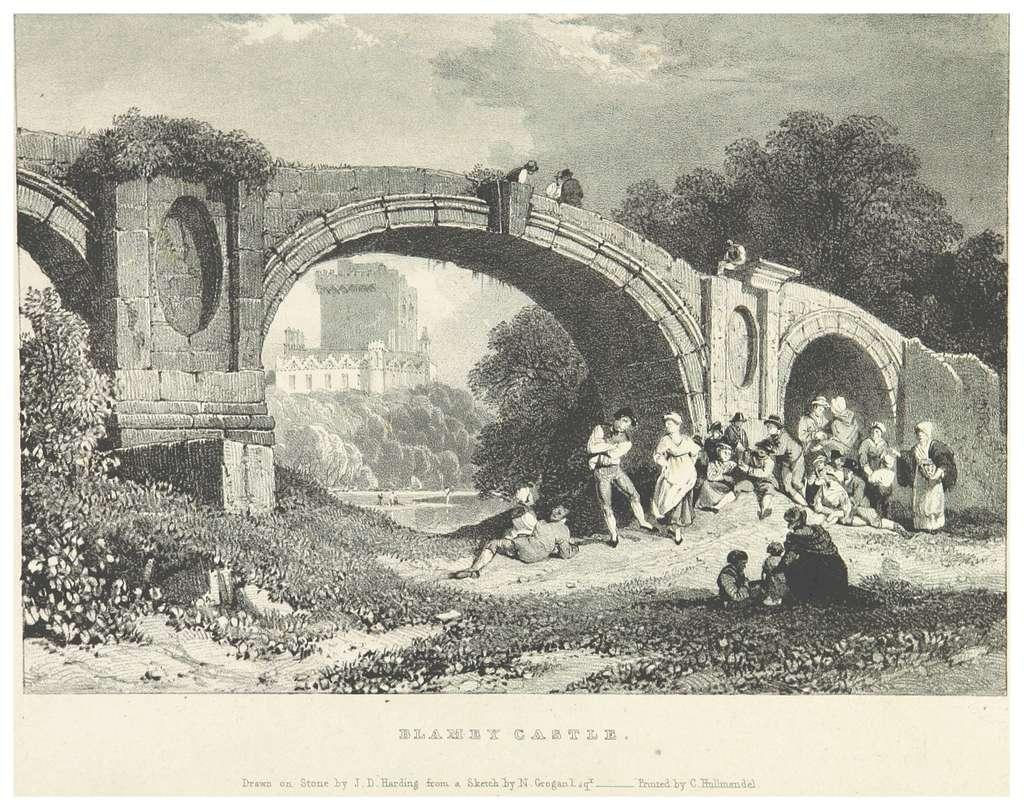 NEWENHAM(1830) p071 BLAMEY CASTLE