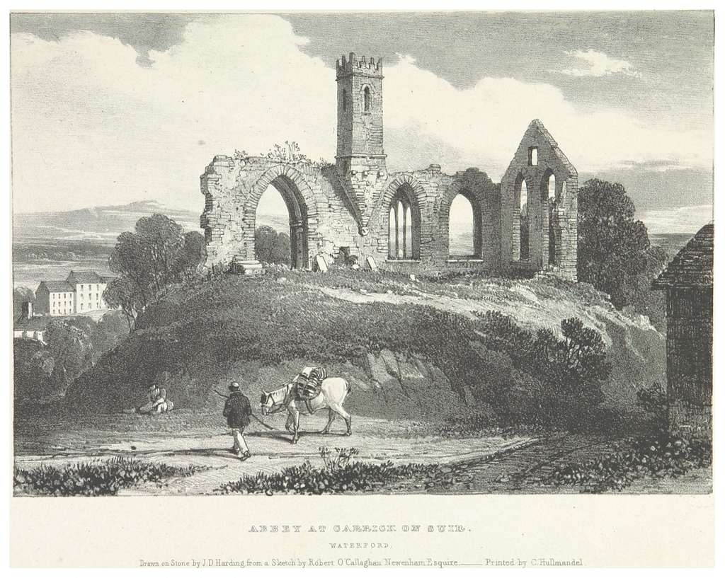 NEWENHAM(1830) p237 WATERFORD - ABBEY AT CARRICK ON SUIR