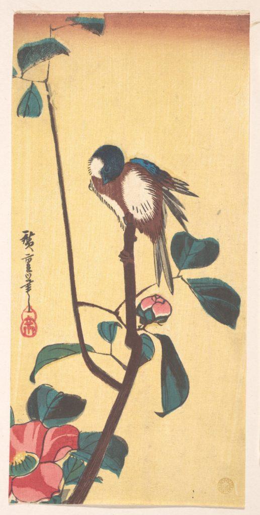Camellia and Blue-Headed Bird