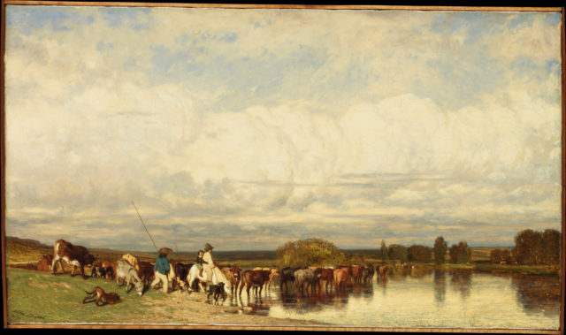 Cows Crossing a Ford