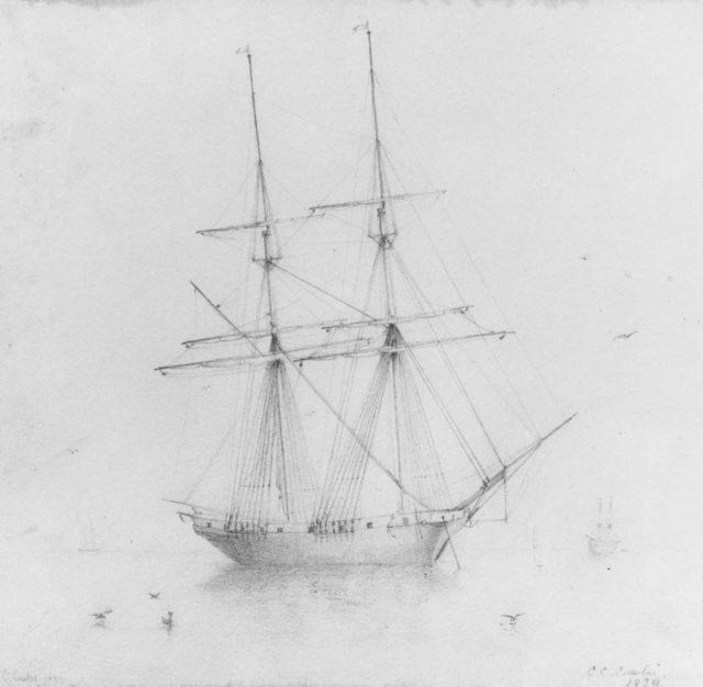 Ship (from McGuire Scrapbook)