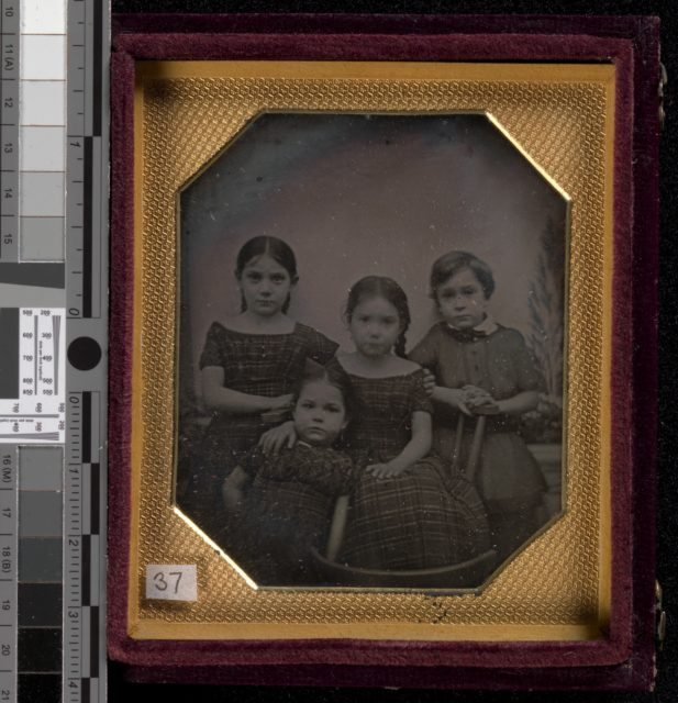 Professor Schneider's Children