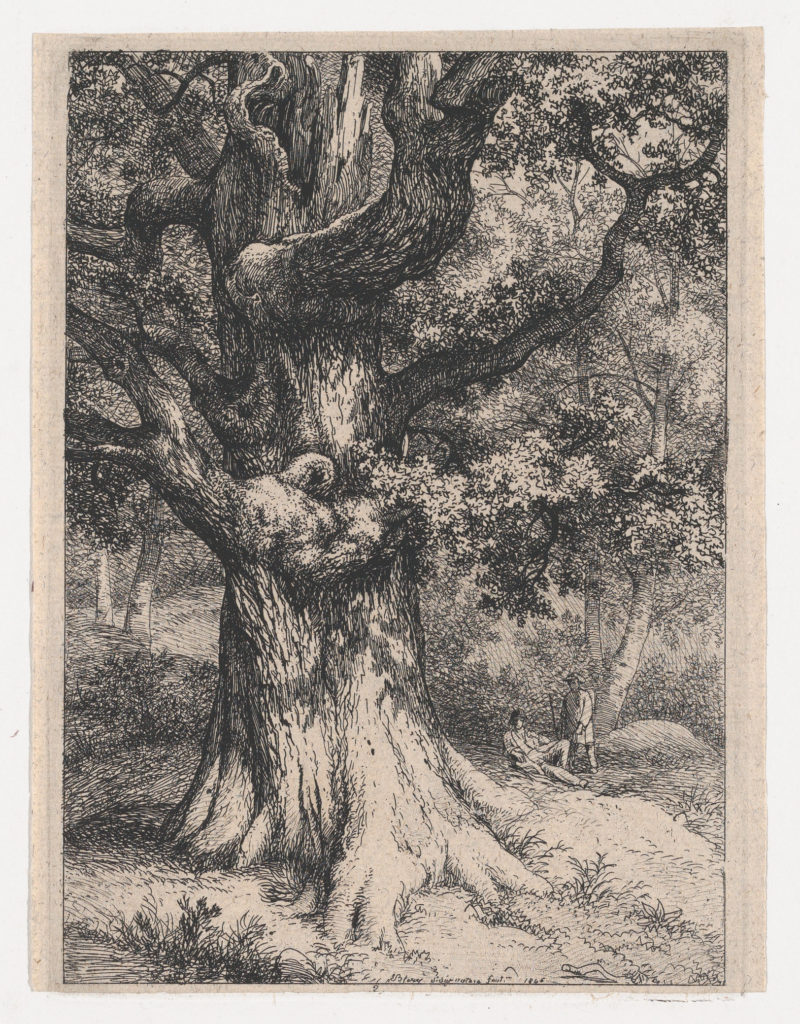 The Charlemagne, Oak Tree with an Eagle's Nest