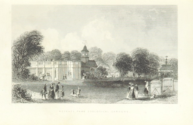 """Regent's Park from """"Illustrated London, or, a series of views in the British metropolis and its vicinity, engraved by Albert Henry Payne, from original drawings. The historical, topographical and miscellaneous notices, by W. I. Bicknell"""""""