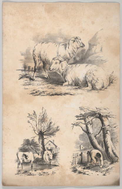 Vignette with two sheep, Vignette with two cows in a pool, and Vignette of a wood-gatherer, in: The New York Drawing Book, Containing a Series of Original Designs and Sketches of American Scenery, No. 2