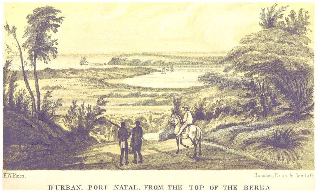 (1850) Durban, Port Natal, from the top of the Berea