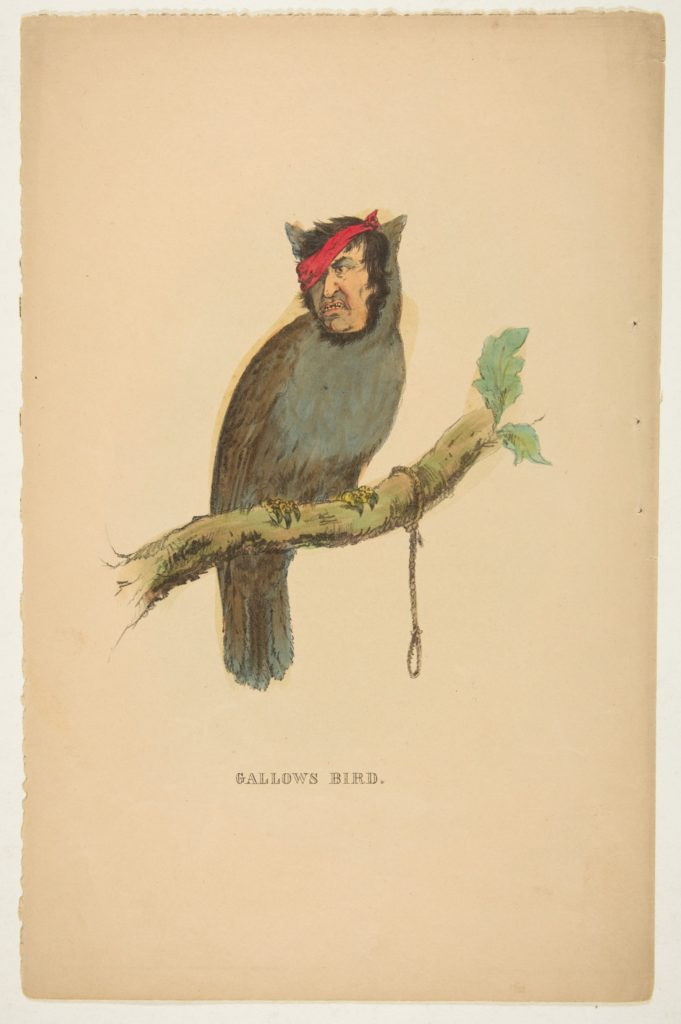 Gallows Bird, from The Comic Natural History of the Human Race