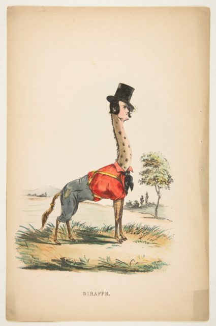 Giraffe (John E. Owens as Jakey), from The Comic Natural History of the Human Race