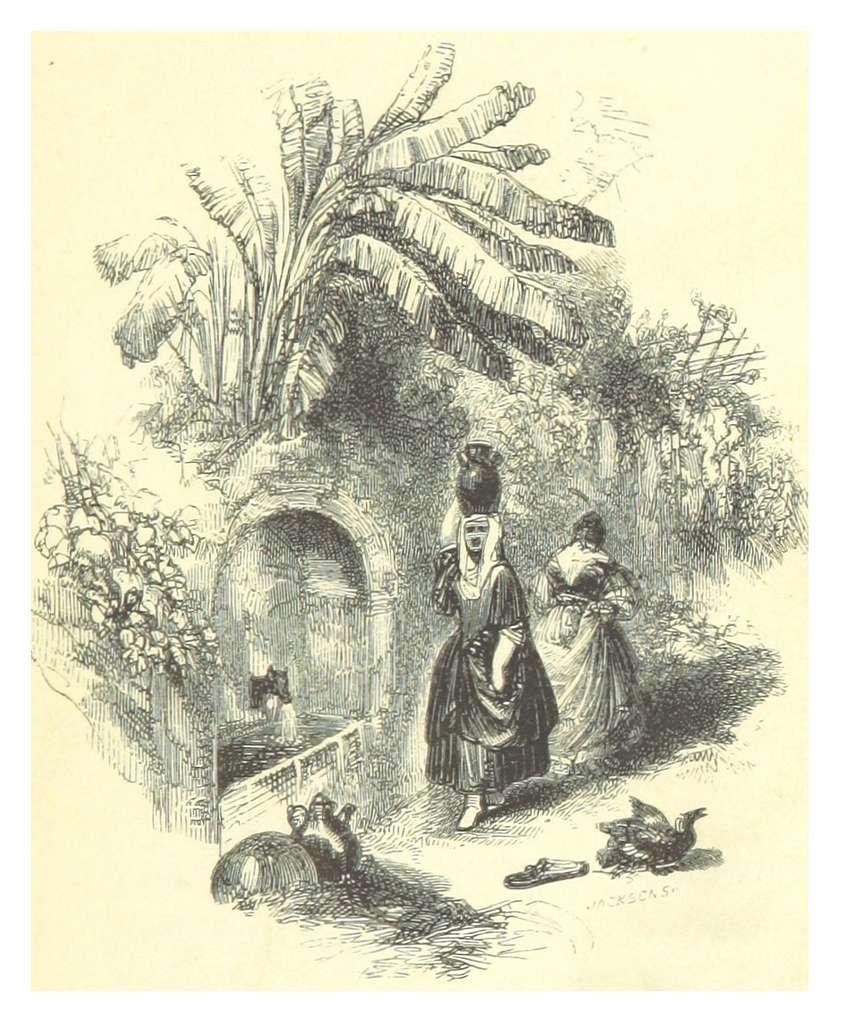 WHITE(1851) p007 Title copper