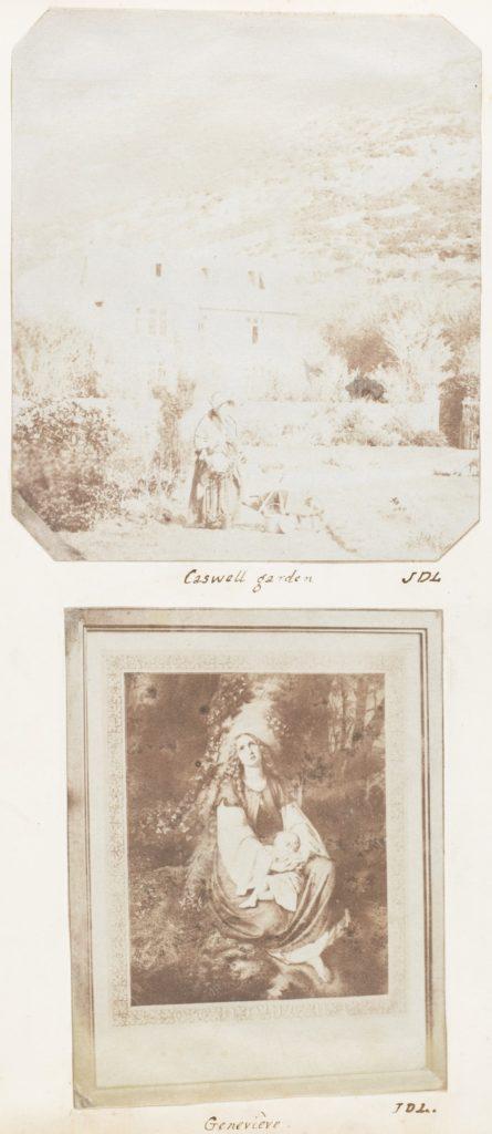 Caswell Garden; Geneviève